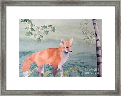 Fox And Birch Framed Print