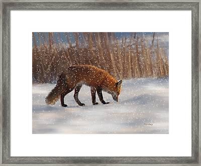 Fox In The Snow Framed Print