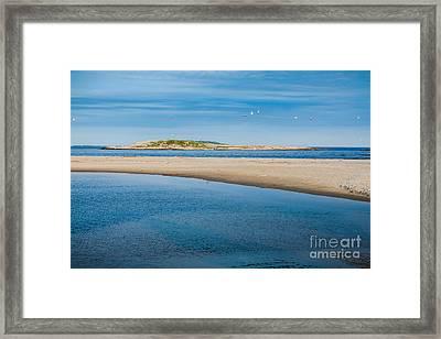 Fox Island Framed Print by Susan Cole Kelly