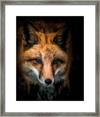 Fox Portrait Framed Print