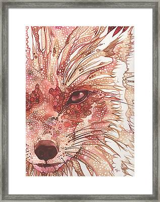 Fox Framed Print by Tamara Phillips