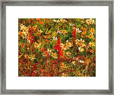 Foxfire 1 Framed Print