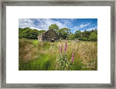 Foxglove Ruin Framed Print