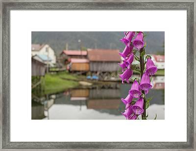 Foxgloves, Digitalis, Flowers Bloom Framed Print