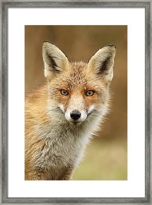 Foxy Face Framed Print