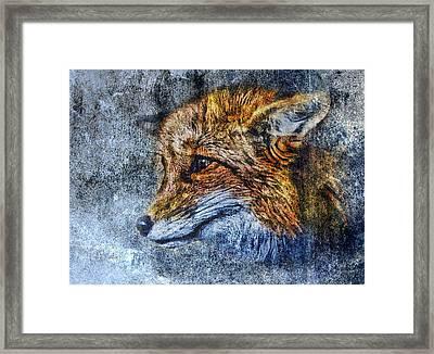 Foxy Framed Print by Yury Malkov