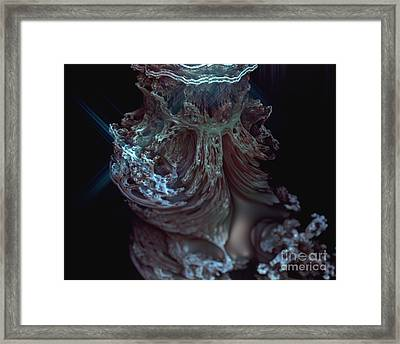 Fractal Beauty 1 Framed Print