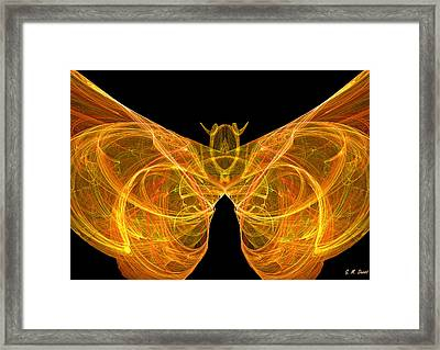 Fractal Butterfly Framed Print by Michael Durst