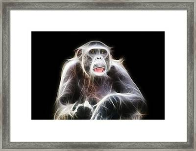 Fractal Chimp Framed Print