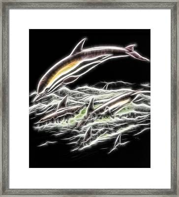 Fractal Dolphins Framed Print by Pati Photography