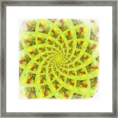 Fractal Flower Framed Print by Bonnie Bruno