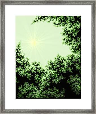 Fractal Forest Framed Print