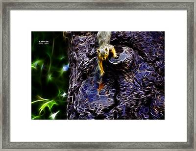 Framed Print featuring the digital art Fractal - From Up Top - Robbie The Squirrel by James Ahn
