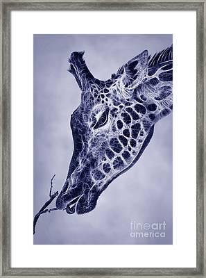 Fractal Giraffe Duotone Framed Print