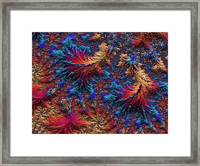 Fractal Jewels Series - Beauty On Fire II Framed Print