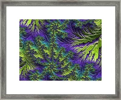 Fractal Jewels Series - Rain Forest Canopy II Framed Print by Susan Maxwell Schmidt