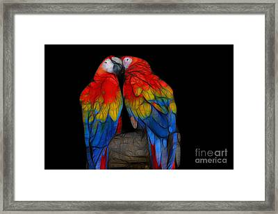 Fractal Parrots Framed Print by Teresa Zieba