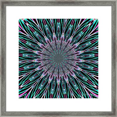 Fractalscope 23 Framed Print