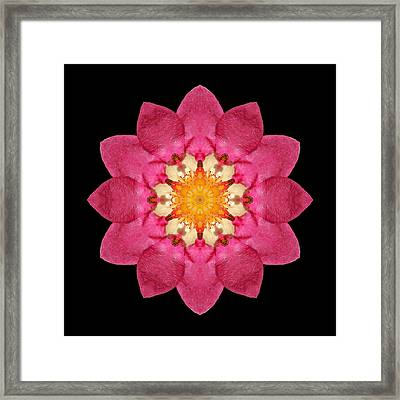 Framed Print featuring the photograph Fragaria Flower Mandala by David J Bookbinder