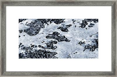 Fragile Patterns Framed Print by Kim Lessel