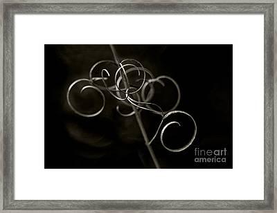 Fragile Silence Framed Print by Maria Ismanah Schulze-Vorberg