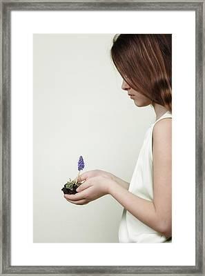 Fragile Spring Framed Print