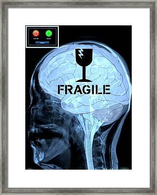 Fragile Substance Framed Print