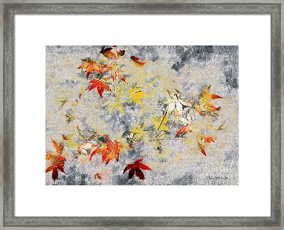 Fragments Of Fall Framed Print by RC deWinter