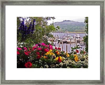 Fragrant Marina Framed Print