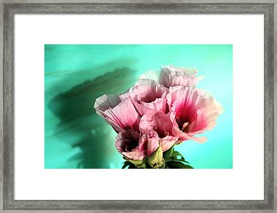 This One Framed Print by Paulette Maffucci