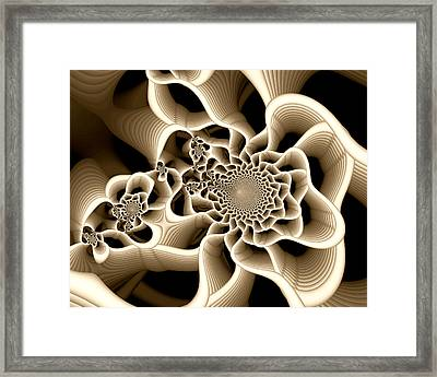 Frail Framed Print by Kevin Trow