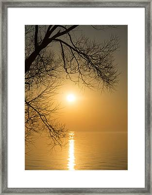 Framing The Golden Sun Framed Print by Georgia Mizuleva