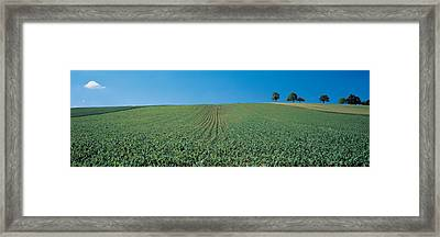 France, Alsace Framed Print