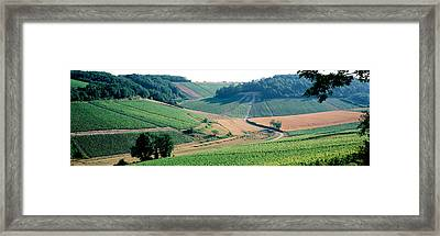 France, Chablis, Vineyards Framed Print by Panoramic Images