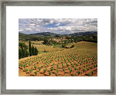 France, Darban-corbieres, Aude Framed Print by David Barnes