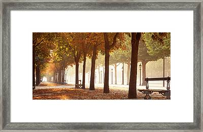 France, Paris, Champs Elysees Framed Print by Panoramic Images