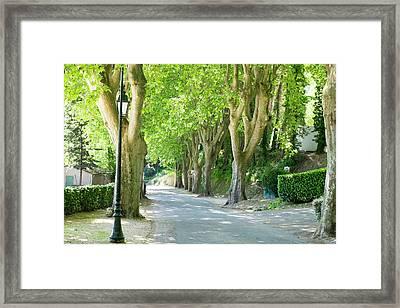 France, Provence, Luberon, Menerbes Framed Print