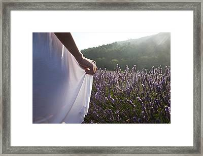 France, Provence. Woman In Lavender Framed Print