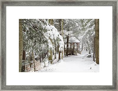Franconia Notch State Park - White Mountains New Hampshire Framed Print by Erin Paul Donovan