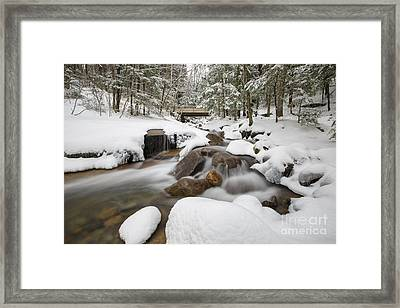 Franconia Notch State Park - White Mountains New Hampshire Usa - Flume Gorge Framed Print by Erin Paul Donovan