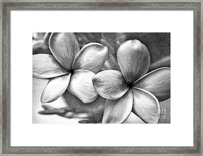 Framed Print featuring the photograph Frangipani In Black And White by Peggy Hughes