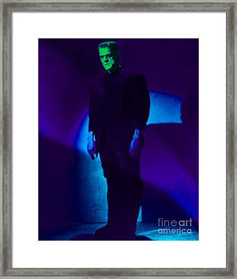 Frankenstein 20130218p68 Framed Print by Wingsdomain Art and Photography