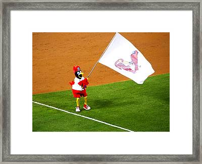 Fredbird Celebrates A Win Framed Print