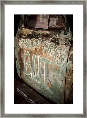 Freds Fresh Bait Framed Print by Paul Bartoszek