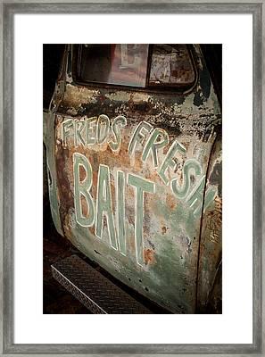Freds Fresh Bait Framed Print by Paul Bartoszek