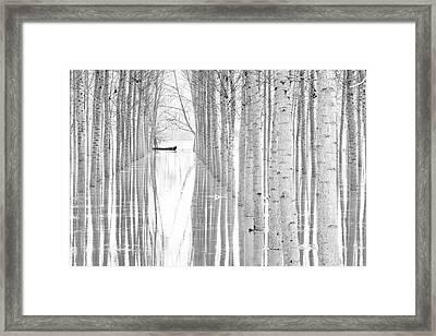 Free Movement Framed Print
