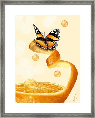 Free Play Framed Print by Veronica Minozzi