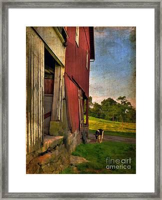 Free Range Framed Print by Lois Bryan