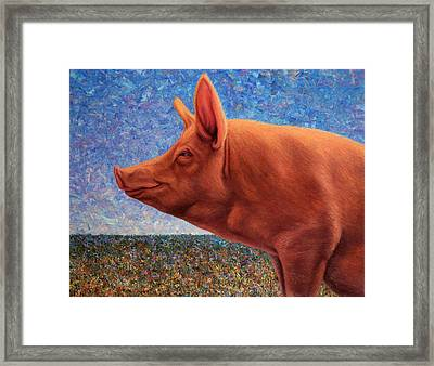 Free Range Pig Framed Print by James W Johnson