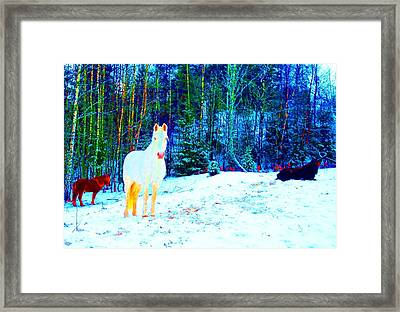 The Blessed Moment Of The Free Spirits Framed Print by Hilde Widerberg